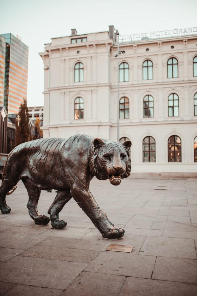 Tigre Oslo